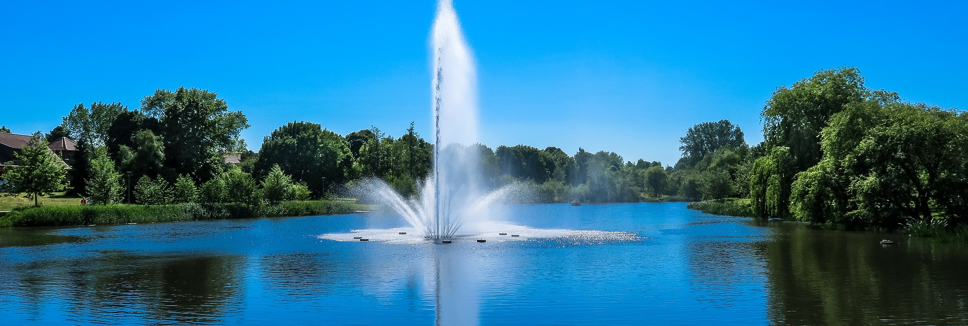 The Lake Doctor - lake management floating fountains Dallas Fort Worth Texas - Lake Management Company - Floating Fountains Aeration Systems Vegetation Control Fish Fish Feeders Installation & Design